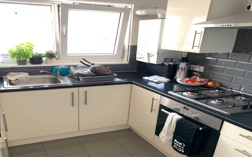 Newly refurbished London share a room in amazingly friendly flat share