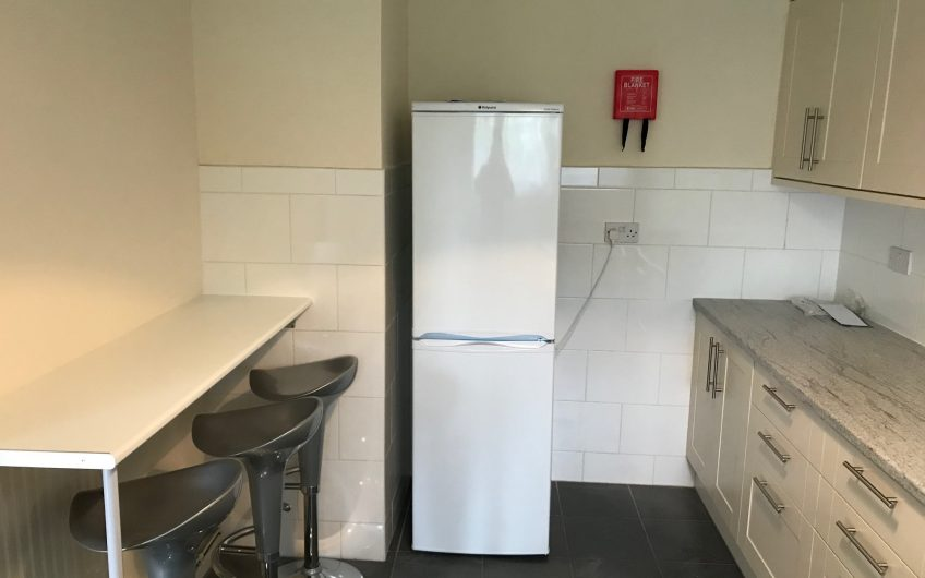 Fantastic newly refurbished double room in amazingly friendly flat share